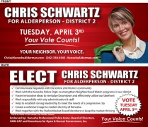 1221 political marketing - Chris Schwartz